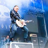 Backyard babies copia
